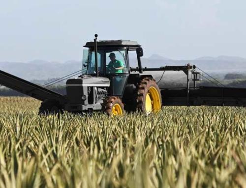 Plan Renove de la maquinaria agrícola 2020